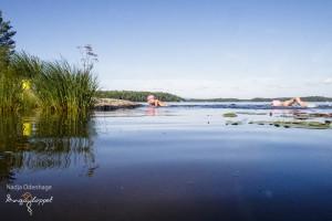 En av simningarna i insjön. Foto: Nadja Odenhage, Ångaloppet